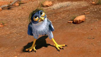 Droles d'oiseaux (4)