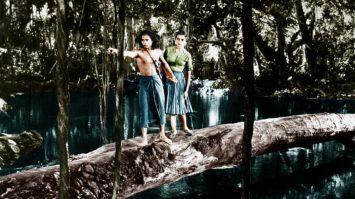 le-livre-de-la-jungle1[1]
