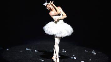 Ballet Trockadero © Marcello-Orselli (17)