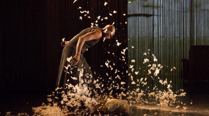 Stage danse avec Germaine Acogny