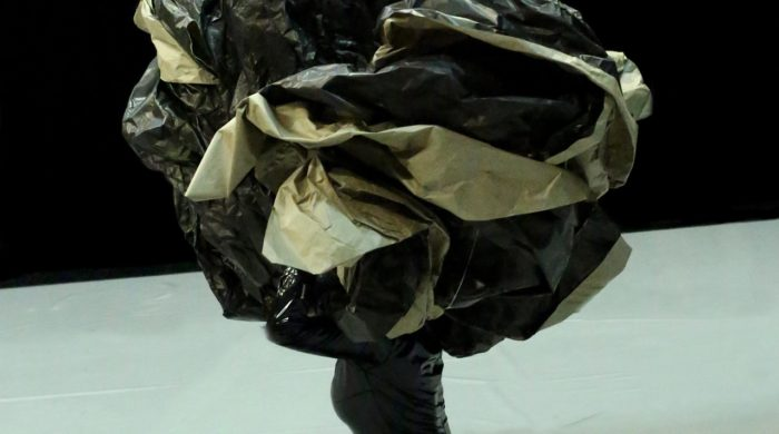 (9) Les Os Noirs - Cie Non Nova - ©️Jean-Luc Beaujault