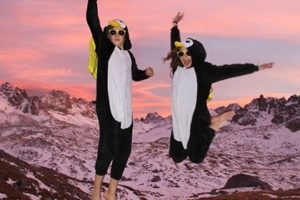 pingouins-300x200