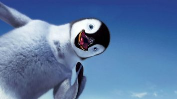 HAPPY FEET PHOTO5
