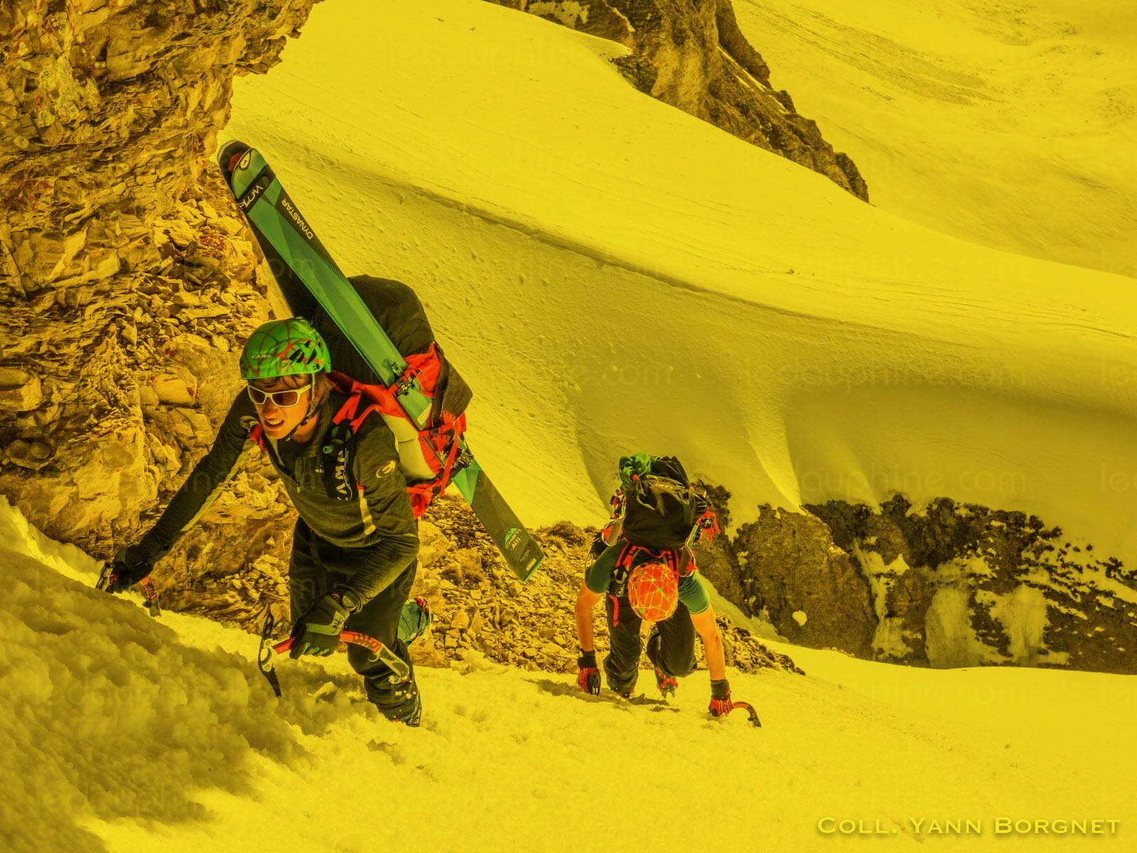 alpine line3